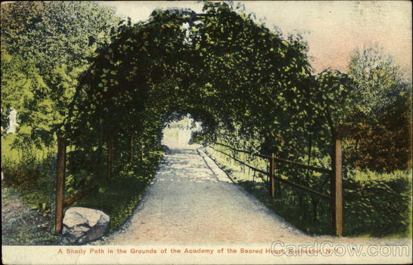 Shady Path In The Grounds Of The Academy Of The Sacred Heart Rochester New York