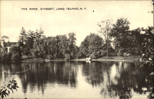 The Pond, Long Island Syosset New York