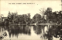 The Pond, Long Island