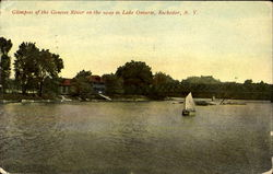 Glimpses Of The Genesee River Postcard