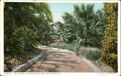 Palm Knoll, Canyon Crest Park