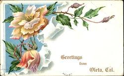 Greetings From Goleta