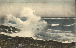 The Surf At The Point, Hog Island Postcard