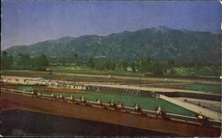 Horses Parading To The Post, Santa Anita Park