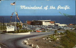 Marineland Of The Pacific