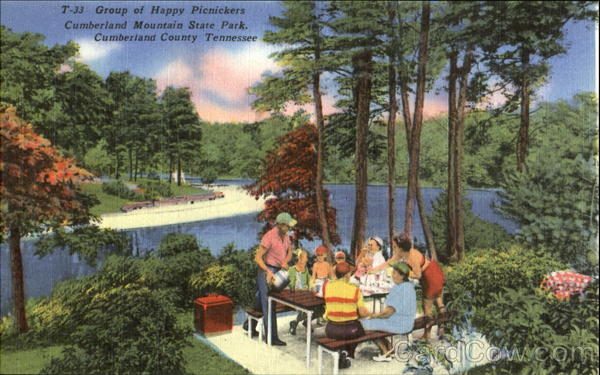 Group Of Happy Picnickers, Cumberland Mountain State Park Tennessee
