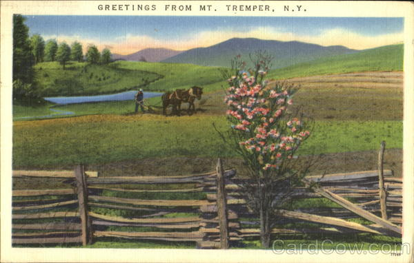 Greetings From Mt. Tremper New York