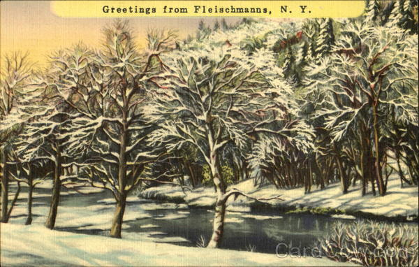 Greetings From Fleischmanns Kingston News Service New York