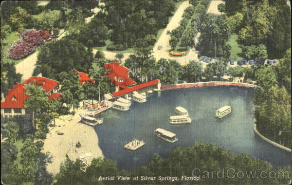 Aerial View Of Silver Spring Silver Springs Florida
