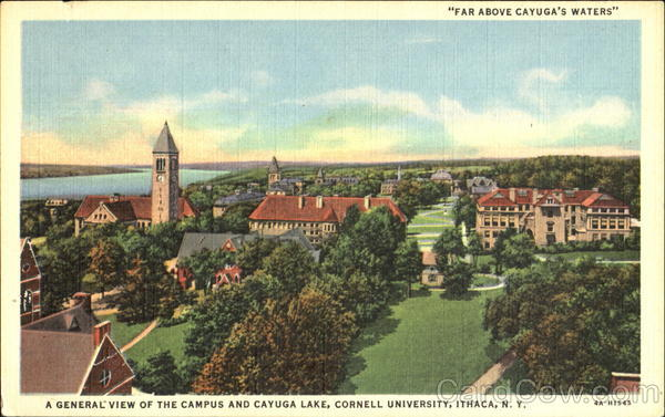 A General View Of The Campus And Cayuga Lake, Cornell University ithaca New York