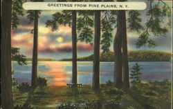 Greetings From Pine Plains Postcard