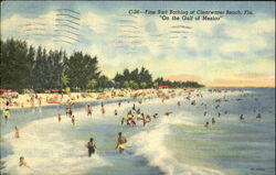 Fine Surf Bathing At Clearwater Beach