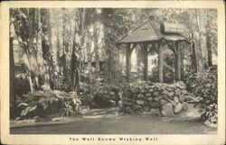 The Well Known Wishing Well