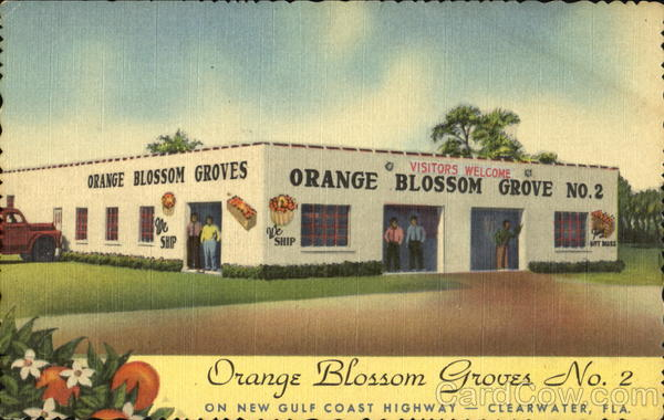 Orange Blossom Groves No. 2 Clearwater Florida