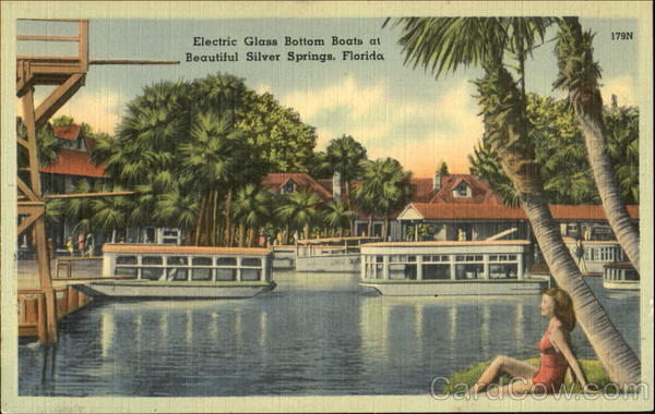 Electric Glass Bottom Boats Silver Springs Florida