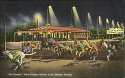 The Hurdle West Flagler Kennel Club