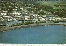 Aerial View Of Downtown Hilo