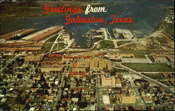 Greetings From Galveston Postcard