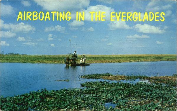 Airboating In The Everglades Scenic Florida