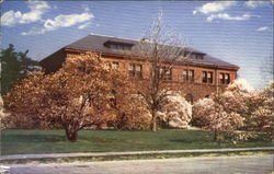 Magnolias And Administration Building, Harvard University