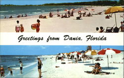 Greetings From Dania Postcard