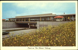 Oasis On The Illinois Tollway Postcard