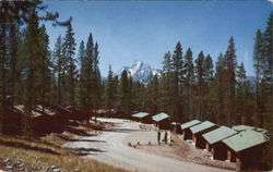 Cabin Area, Colter Bay Grand Teton National Park Postcard