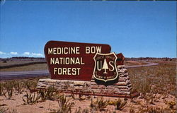 Medicine Bow National Forest, Highway 80
