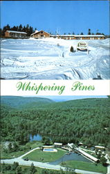 Whispering Pines, Motel and Ski Lodge Postcard