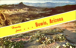 Howdy From Bowie Postcard