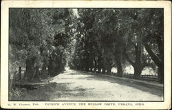 Patrick Avenue, The Willow Drive