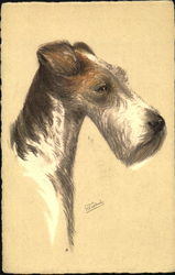 Wire-Haired Fox Terrier Drahthaar - Terrier