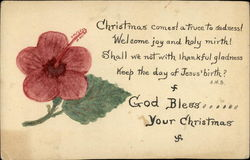 Picture of Hibiscus Flower and Christmas Verse