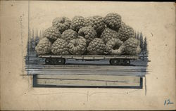 Rare Original Art - A Carload of Raspberries #2190