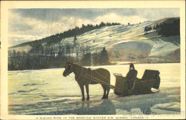 A Sleigh Ride In The Bracing Winter Air Quebec Canada