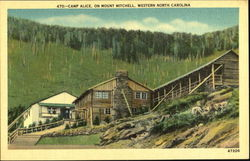 Camp Alice, Mount Mitchell