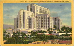 The Los Angeles County General Hospital Postcard