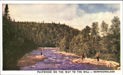 Pulpwood On The Way To The Mill