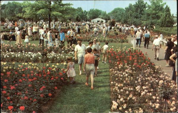 Jackson & Perkins Rose Garden Newark New York