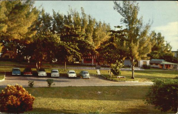 Beyond The Grove Of Trees Varadero Cuba