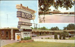 Peach Blossom Motel, Interstate Highway 85 at S. C. 9