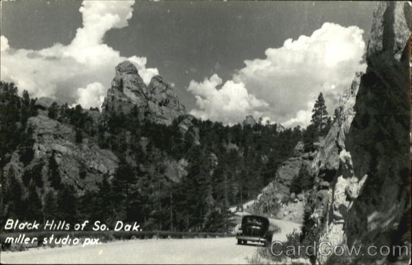Black Hills Of So. Dak Scenic South Dakota