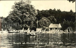 Beach At Chenango Valley State Park
