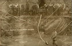 Logan Fish Pond, Annual Spring Cleaning Postcard