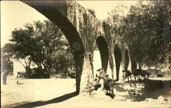 Archways Surrounded by Cattle and People