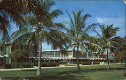Grand Bahama Club Postcard
