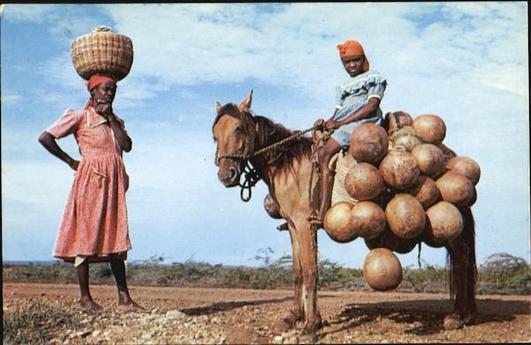 Mother And Daughter With A Load Of Calabashes Haiti