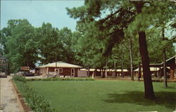 Shady Grove Motel & Restaurant Postcard
