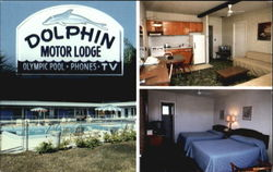 Dolphin Motor Lodge, Hwy. 707 Postcard
