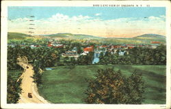 Bird's Eye View Of Oneonta